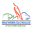 Oiled Wildlife Care Network